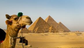 egypt ididgo