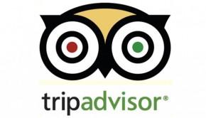 TripAdvisor hits milestone